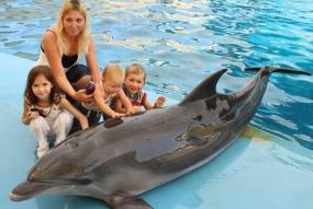 Фото з дельфінами на Ваш пристрій + 1 друковане фото формату А4