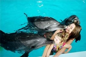 Плавання з дельфінами + фото (А4) 5хв
